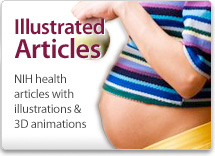 Illustrated Articles