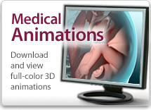 Medical Animations